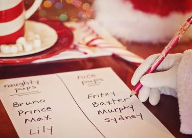 Hotel Christmas List: tutto quello che puoi regalare, a te e ai tuoi clienti 3